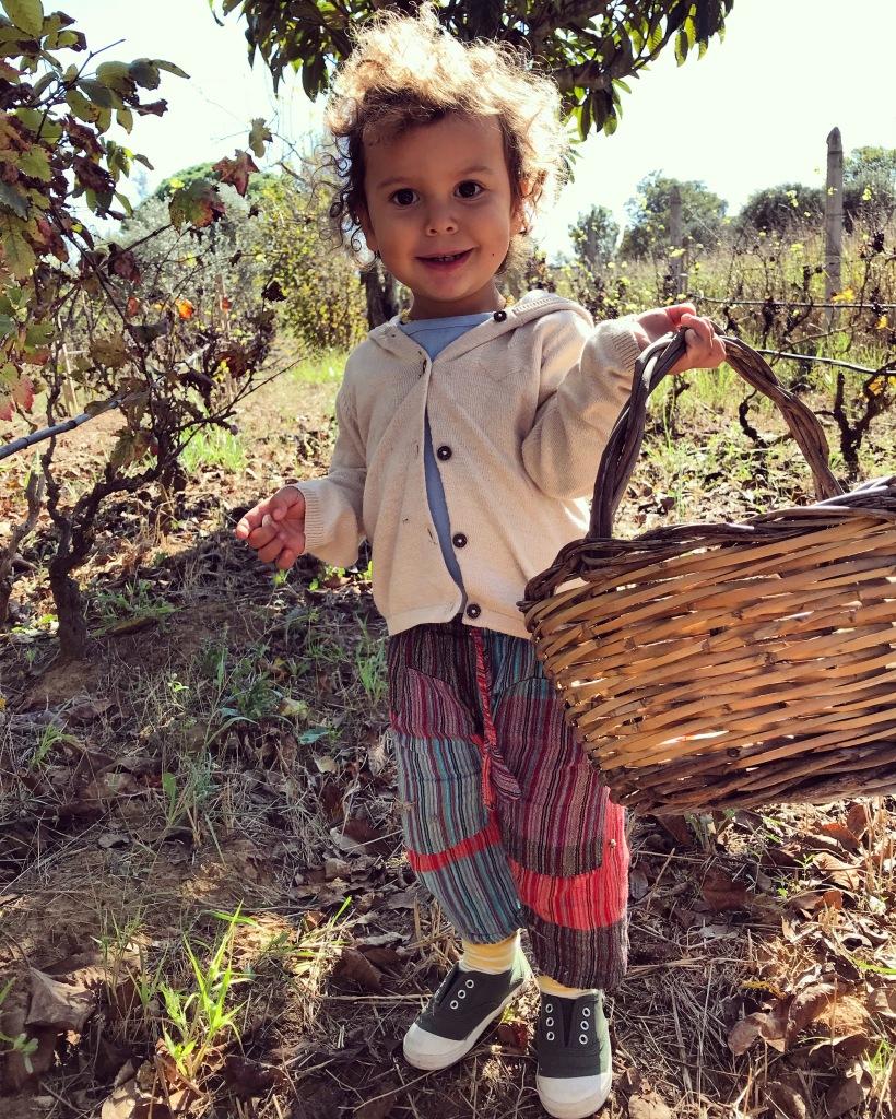 countryside life, campagna, vita naturale, natura, famiglia, vegan, bambini, libertà, eco, sostenibile, casa, vita