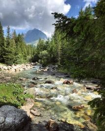 viaggiare, viaggiare da sola con bambini, bambini, vegan, famiglia, mama rainbow, alpi, montagna, esplorare, natura, castelli, bosco,