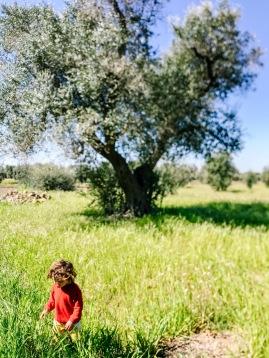 minimalismo, comfort zone, vita, semplice, famiglia, natura, bambini, zero waste, scelte, decisioni, educazione, evolvere, consapevolezza, decisioni, educare, amore, libertà, indipendenza, felicità,